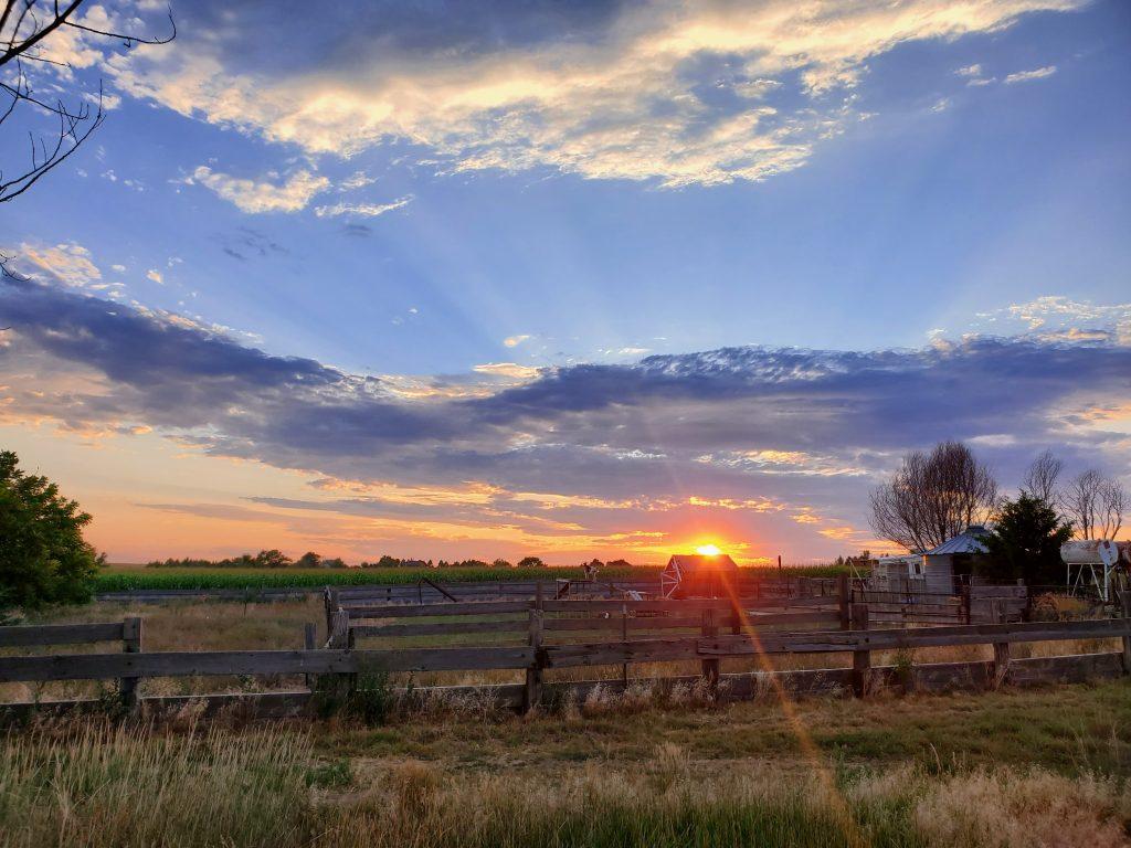 Sunset over Papa Moon Vineyard